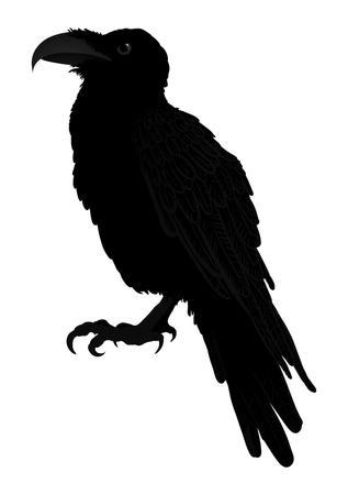 Decorative bird. Line art. Rook. Black and white drawing. Tattoo. Graphic arts. Silhouette of a crow. Circuit birds. Vector. Ilustração