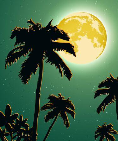 jungle scene: Jungle at sunset background illustration Illustration