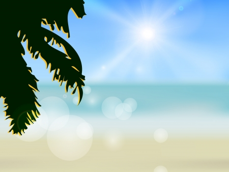 Hawaii beach  illustration of the tropical beach Vector
