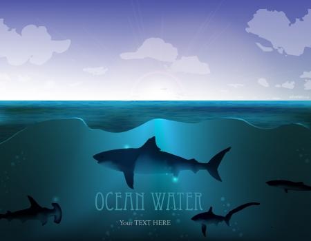 underwater scene: underwater scene