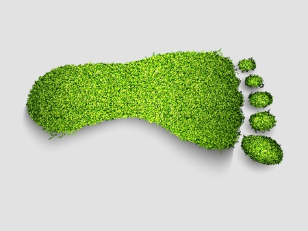 green footprint: foot green grass