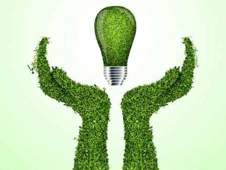 ecologic: Manos sosteniendo bombilla de luz verde ecolog�a, vector icono Vectores