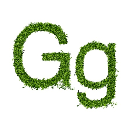 Isolated grass alphabet on white background  vector illustration Vector