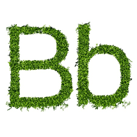 Isolated grass alphabet on white background  vector illustration Stock Vector - 14809974