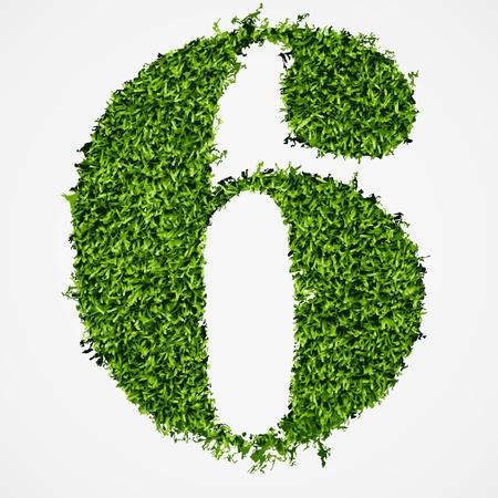 ecologist: Number six grass texture  Vector illustration Illustration