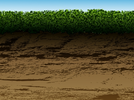 soil with grass in the context for viewing Vector