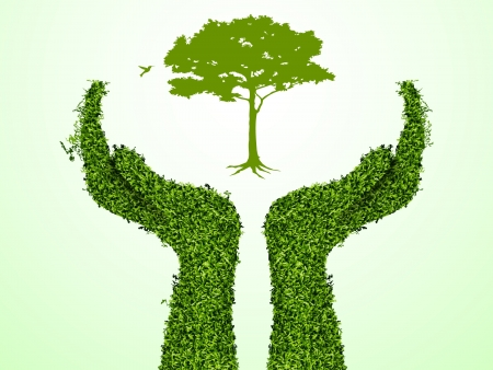 Hand holding a tree that show the growth your business  Vector illustration  Illustration