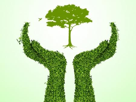 earth in hand: Mano que sostiene un �rbol que muestra el crecimiento de su negocio ilustraci�n vectorial