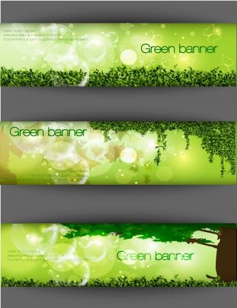 pancarte bois: banni�re verte de l'herbe et des feuilles