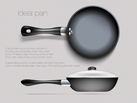 eating utensil: empty pan