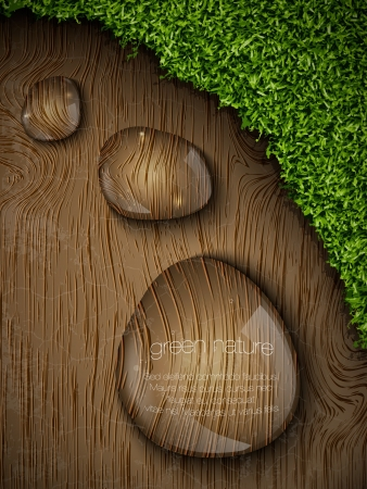 dew drops on a wooden background Stock Vector - 16111291