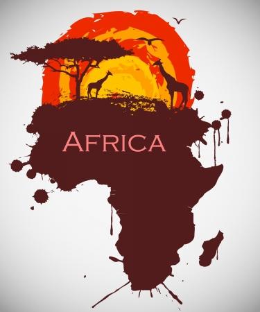 afrika, Savanne Tier-und Pflanzenwelt