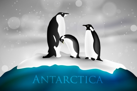antarctica: Antarctica with penguins and snow Illustration