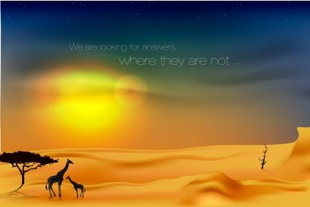 beautiful sunset in the desert Stock Vector - 16503527