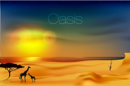 beautiful sunset at the oasis Vector