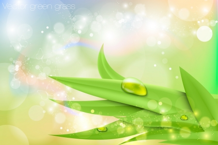 morning dew: Vector background in pastel colors with green grass and dew