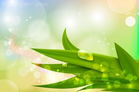 Vector background in pastel colors with green grass and dew Stock Vector - 16493315
