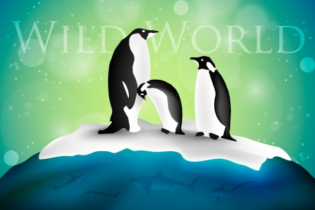 Antarctica with penguins and snow Illustration