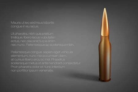 gun shell: Cartridge, the bullet on a gray background with your text