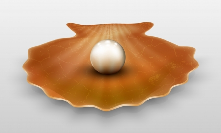 oyster shell:  pearl in shell