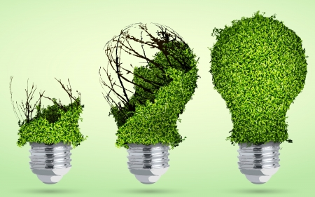 greening light bulb out of the grass Illustration