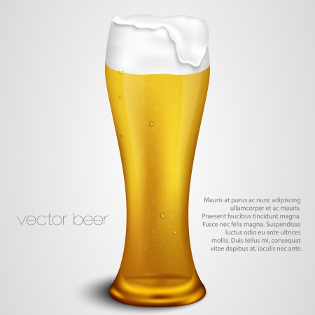 light beer with the foam in a glass Stock Vector - 17535736