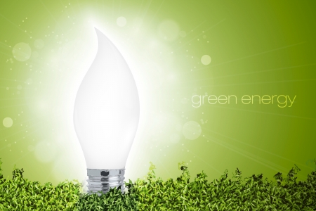 light source: Energy saving light bulb with a bright light in the grass  concept of ecology Illustration