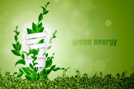 Het concept van groene energie, spaarlamp met bladeren