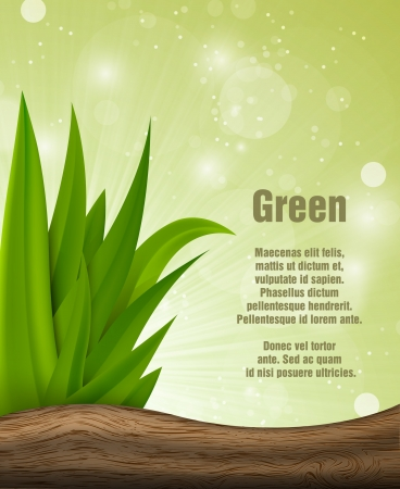 Green grass with wood Stock Vector - 18419184