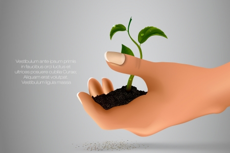 handful of ground with green sprout in her hands  concept of ecology Illustration
