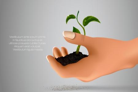 Handvoll Boden mit grünen Spross in ihren Händen Konzept der Ökologie