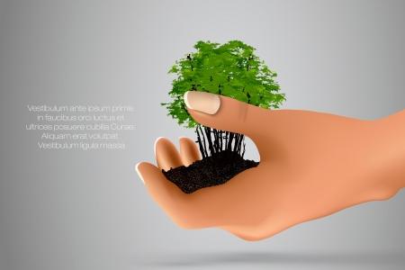 avuç: Ekolojinin elleri kavramı yeşil filiz ile zemin avuç