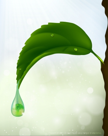 green leaf with a drop of flowing  ecological theme Illustration