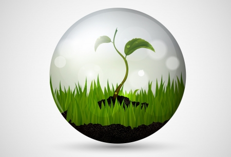 flowed: green grass and leaves in a bubble with patches of sunlight Illustration