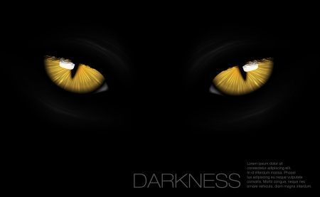 close up face: cat eyes in darkness