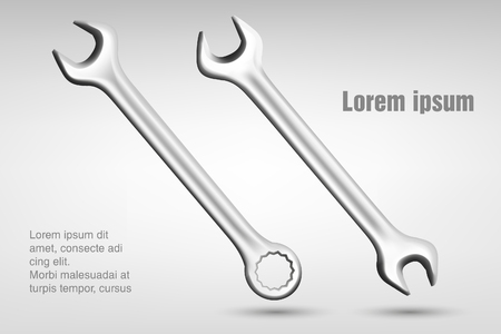 spanners  vector illustration Vector