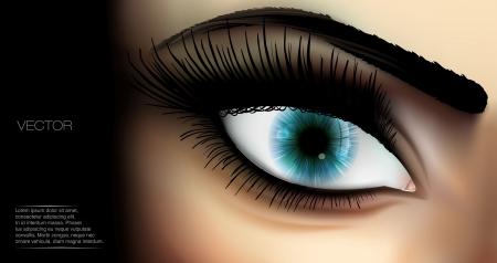 long eyelashes: Female Eye