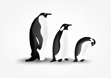 three penguin on white background Vector