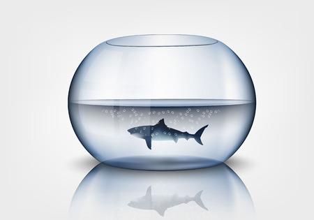 fish bowl: Aquarium with shark Illustration