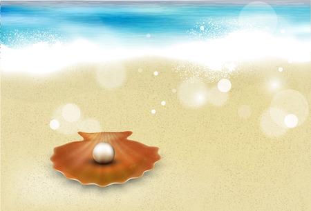 sandy beach with shell Vector