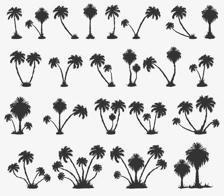 set of solar palm beach in a dark color