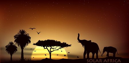morning walk: sunrise over the savannah with African elephants and palm trees