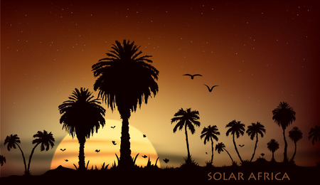 lion silhouette: Sunsets and sunrises over the savanna with palm trees