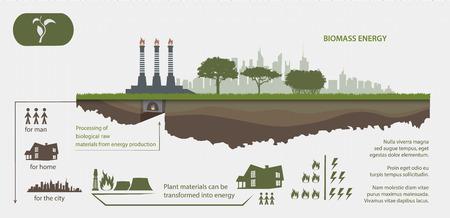 Biomass: Renewable energy from biomass energy illustrated infographics Illustration