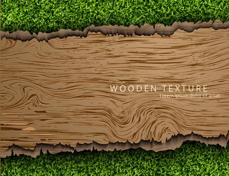 textura: Šablona pro text z dřevěné pozadí s stíny a tráva Ilustrace