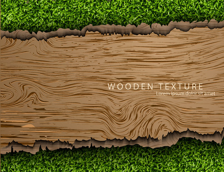 Template for the text from the wooden background with shadows and grass. Stock Photo