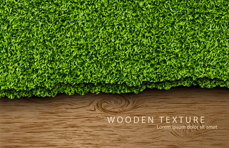 lawn: Template for the text from the wooden background with shadows and grass