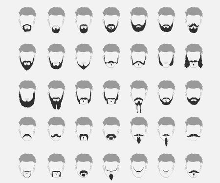 beard: Set of mustache and beard of different lengths