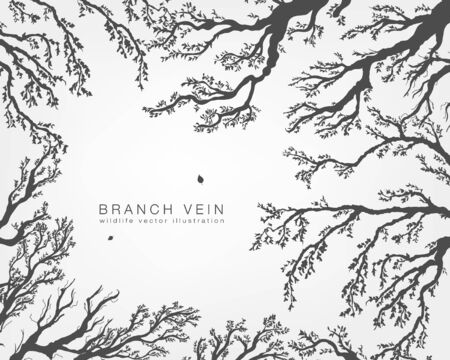 branches with leaves: tree branches with leaves and forest on a white background