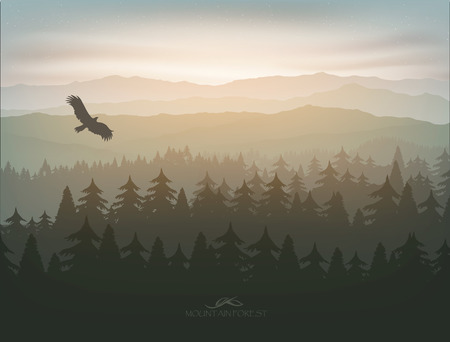 mountain forest in fog and sunrise with stars Vectores